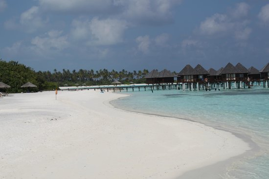 Olhuveli Beach & Spa Maldives:                   пляж