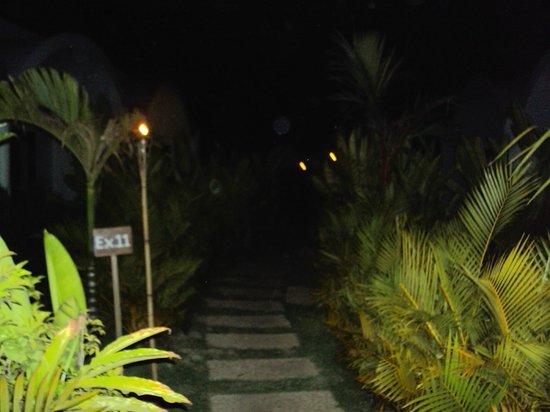 Navutu Dreams Resort & Wellness Retreat:                   Path to the Explorer rooms at night