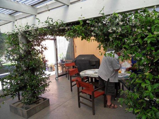 Botany Way Homestay - Bed & Breakfast:                                     terrasse intérieure