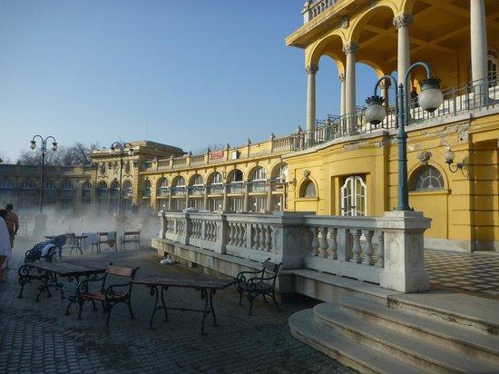 Bagni Széchenyi badhuis - Picture of Szechenyi Baths and Pool ...