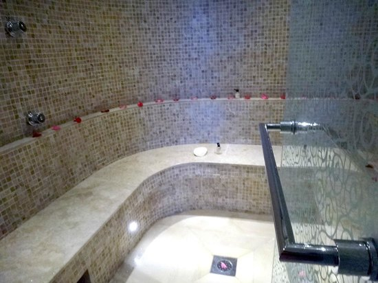 Park Hyatt Dubai: Steam room