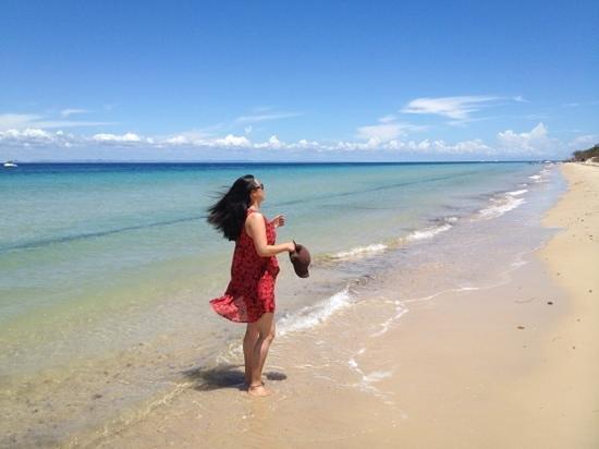 Castaways Moreton Island:                   castaway beach