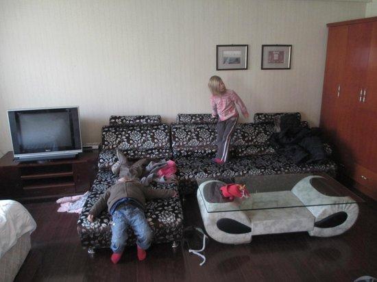 Yingu Hotel - Harbin:                   Living area (children not included)