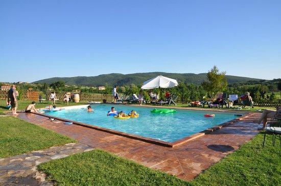 Agriturismo Podere Borgobello :                   piscina