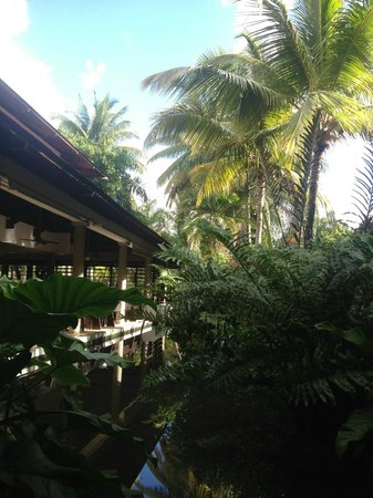 Bavaro Princess All Suites Resort, Spa & Casino:                   VUE DU SELF