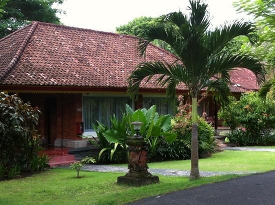 Inna Grand Bali Beach Hotel:                   территория отеля январь 2013