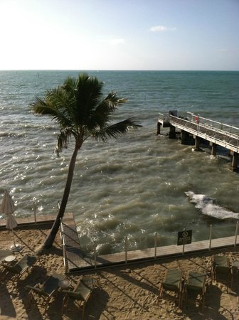 Southernmost Beach Resort:                                     Our view!