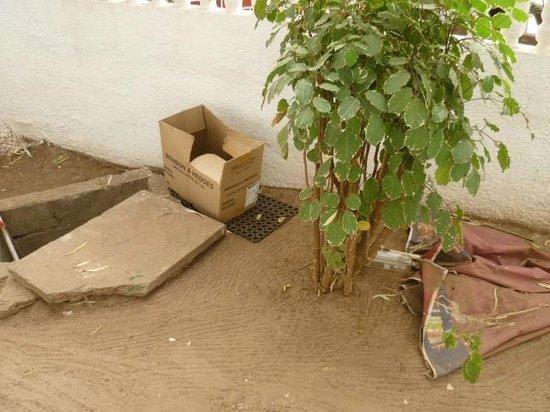 Badala Park:                                     Discarded rubbish outside balcony area