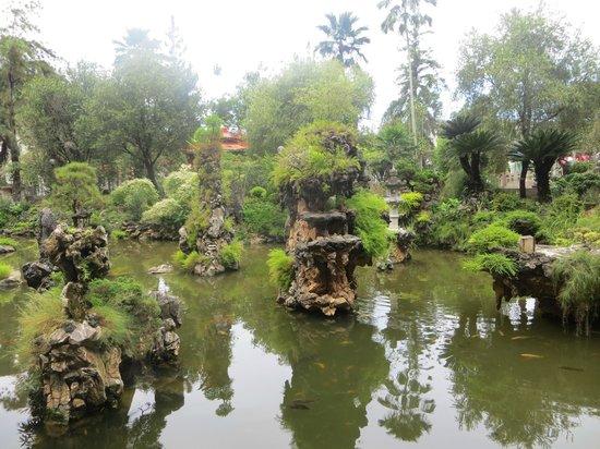Ipoh French Hotel:                                                       beautiful bonsai water gardens at the sam