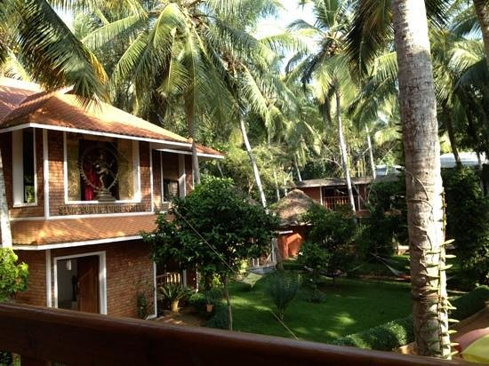 Dr. Franklin's Panchakarma Institute and Ayurveda Centre:                   Ausblick