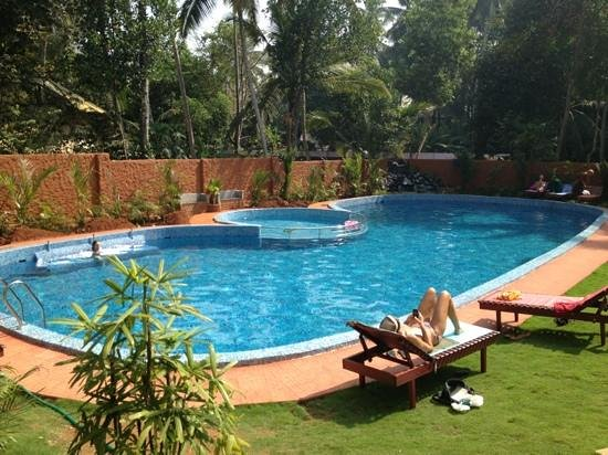 Dr. Franklin's Panchakarma Institute and Ayurveda Centre:                   neuer Pool