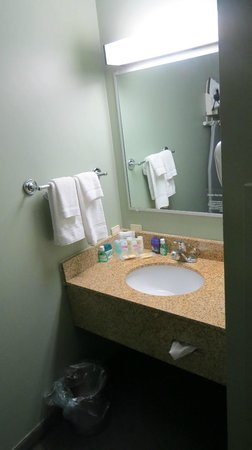 Quality Inn Halifax Airport:                                     sink, not located in the bathroom