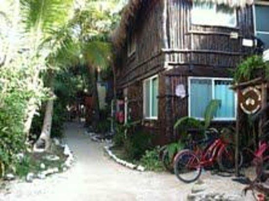 ماي تولوم كاباناس:                   My Tulum Cabanas                 