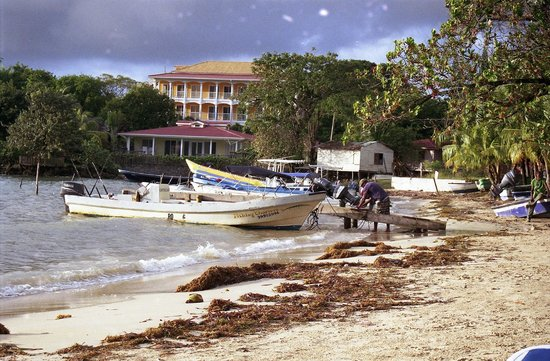 Crystal Beach Cabins :                                     I colori di Roatan...