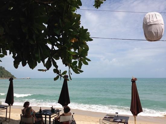 Buri Rasa Koh Phangan:                   Blick aus dem Restaurant