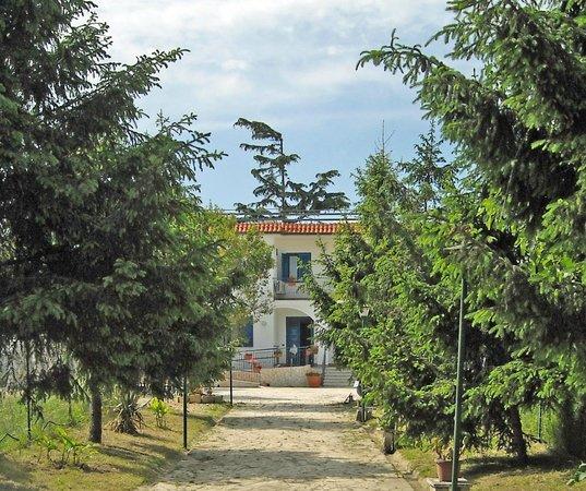 Villa Glori: STRUTTURA
