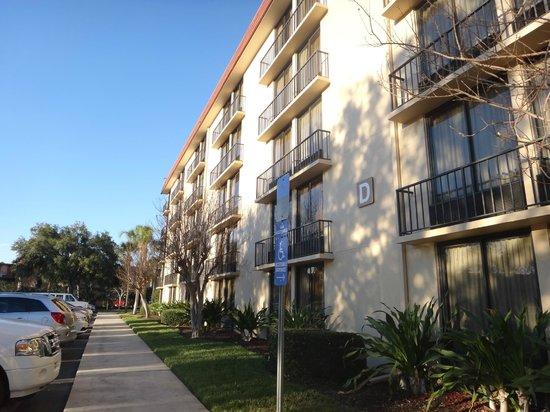 International Palms Resort & Conference Center:                   Vista dos apartamentos Bloco D