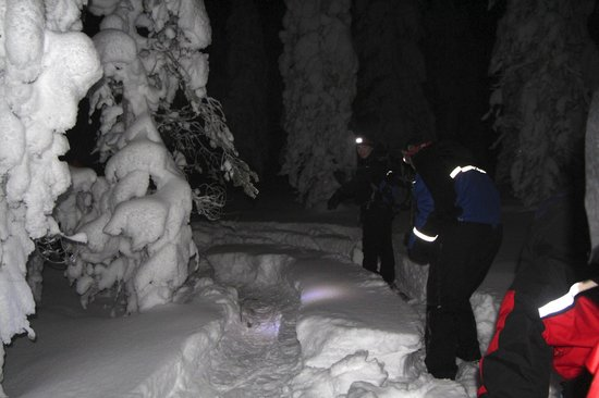 Lapland Safaris - Rovaniemi:                   Stikke donker maar heel erg leuk