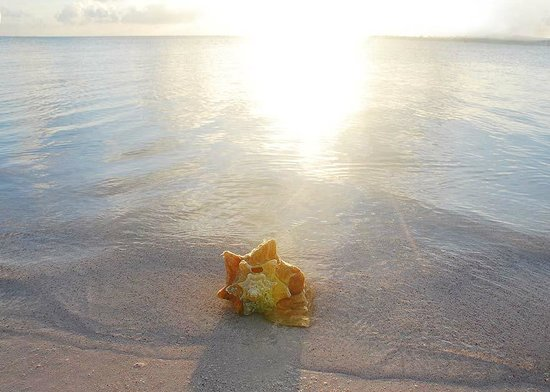 Sunset on Owen Island Beach