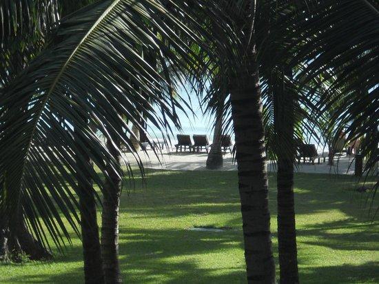Paradise Sun: Vista dalla camera