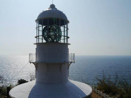 Cape Muroto:                   灯台まではかなりの登りです。