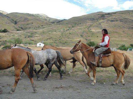 Estancia Nibepo Aike:                   Gaucho