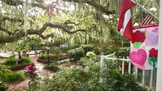 Tybee Island Inn:                   More of the garden area
