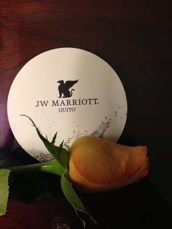 JW Marriott Hotel Quito:                   Every arrival is greeted by a rose in your room.