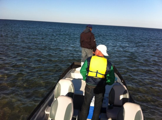Magdalena Bay Whales:                   In the boat