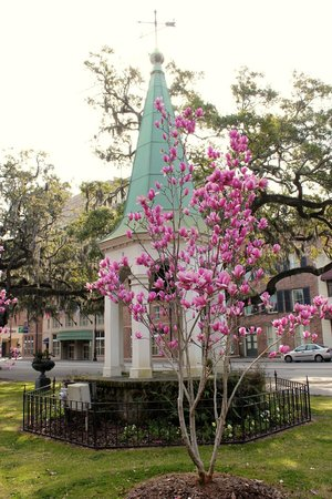 Savannah Historic District:                   Historic District