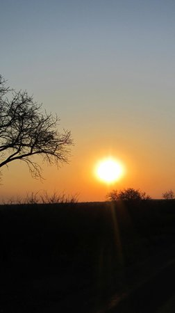 Maqueda Lodge:                   Sunset African Bush - in Marloth Park