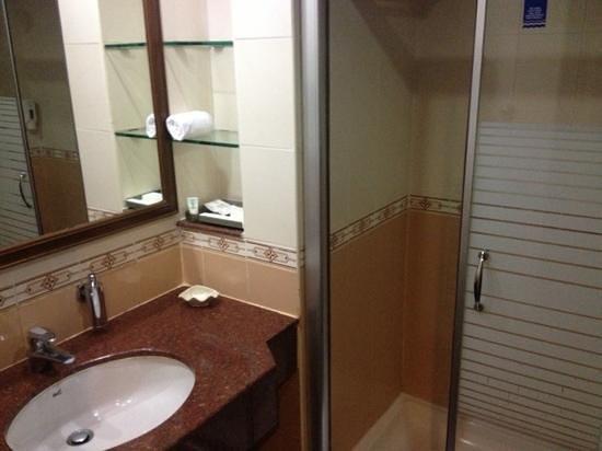 GreenPark Chennai:                   Bathroom was OK