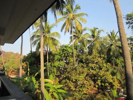 Anjuna Beach Resort:                   View from our balcony
