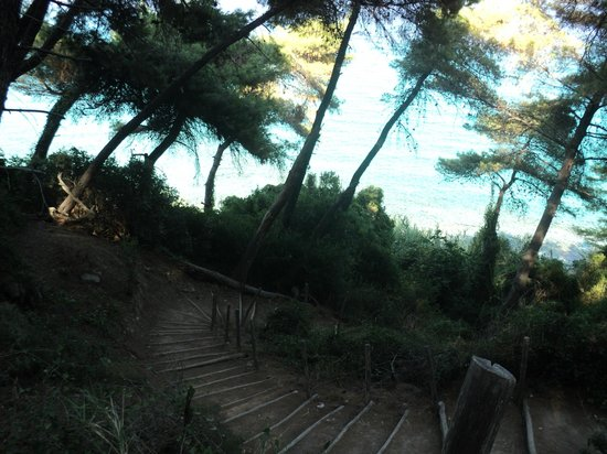 Nostos Hotel:                   πανέμορφη θέα της παραλίας