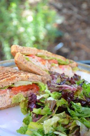 Windy Ridge Cafe: Tuna Sandwich and Salad