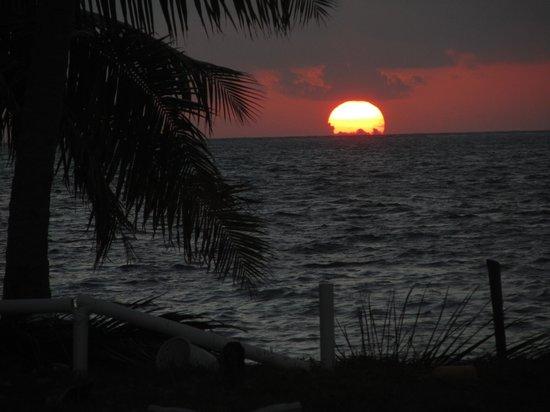 Tropical Paradise Hotel:                   l'alba