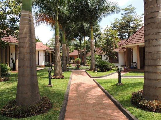 Salinero Kilimajaro Hotel:                   Round ovals behind the reception
