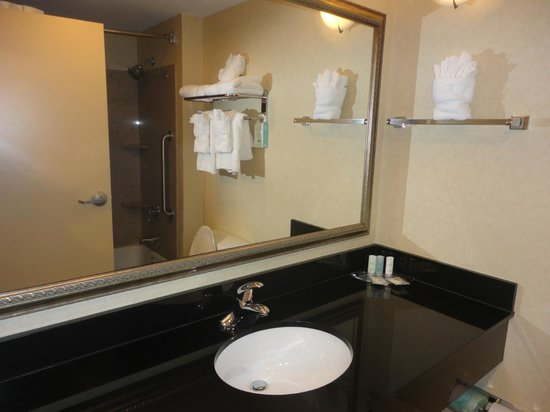 Comfort Suites Fredericksburg North:                   Bathroom had granite counters