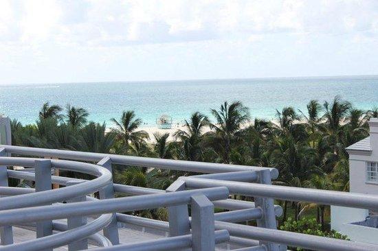 Z Ocean Hotel South Beach:                   south beach