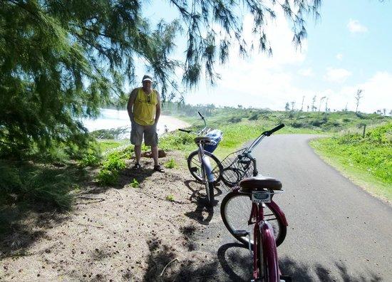 Coconut Coasters Beach Bike Rentals :                   On the trail North of Donkey Beach
