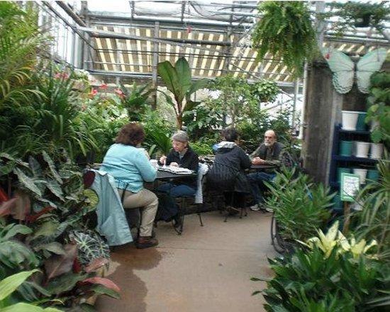 Garden Of Eatinu0027 Cafe: Lush Greenhouse Eating Area
