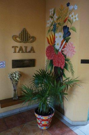 Hotel Casa San Angel:                   Hall de entrada