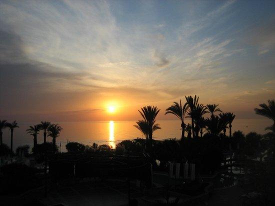 SENTIDO Perissia:                   super sunsets