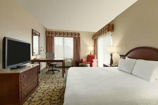 Hilton Garden Inn Wisconsin Dells: Guestroom