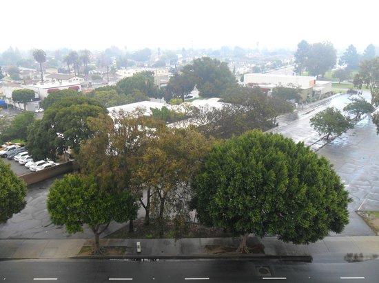 Custom Hotel: Vista desde nuestra ventana