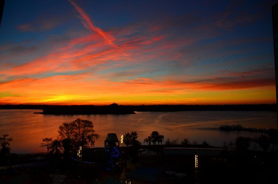 Bay Lake Tower at Disney's Contemporary Resort:                   Sunrise as seen from room 7011
