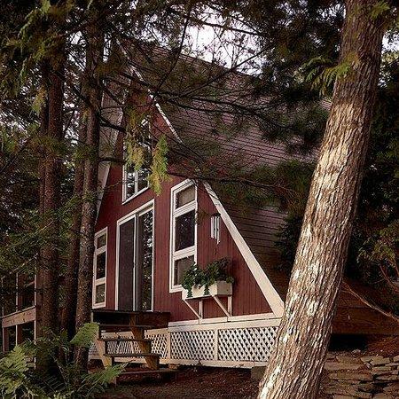 Camp Skoglund : The Lodge $1,100 per week