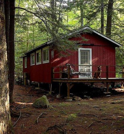 Camp Skoglund : Ink's Spot  -$650 per week
