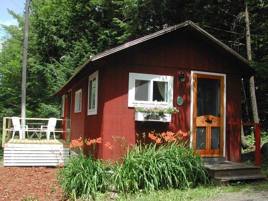 Camp Skoglund : The Nest - $500 per week