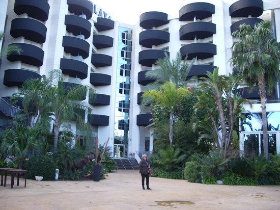 Albir Playa Hotel & Spa: jardines del hotel